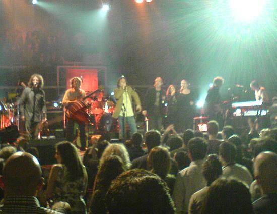 koncert Gibbonija na Gripama