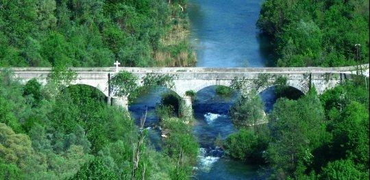 Pavića most
