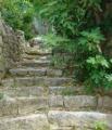 stare skaline