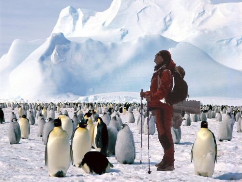 Pauletić ide na Južni pol