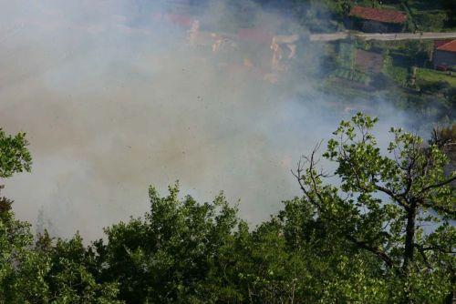 požar u brnistri
