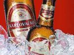 pivo!